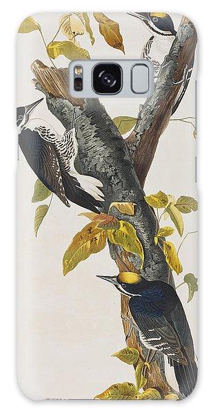 Three Toed Woodpecker Galaxy Case