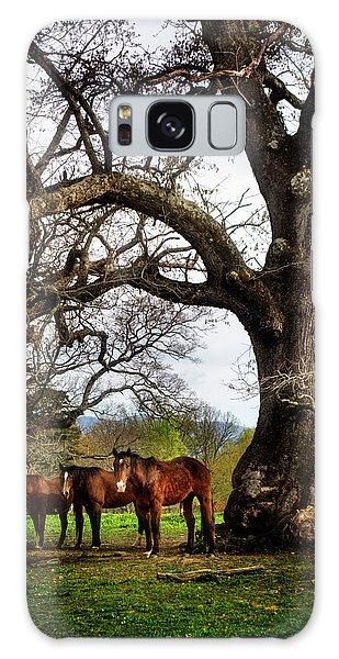 Three Under A Tree Galaxy Case by Greg Mimbs