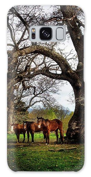 Three Under A Tree Galaxy Case