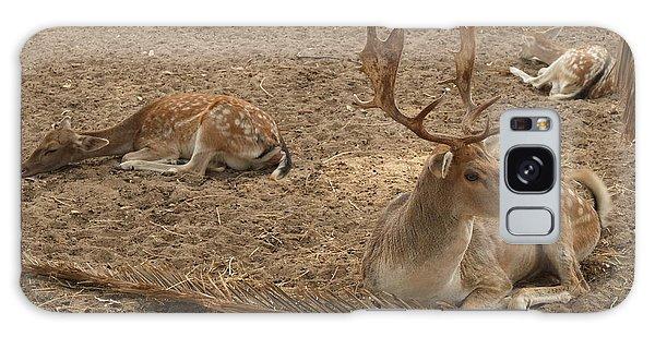 Three Deer Resting Galaxy Case
