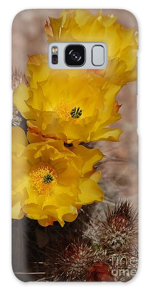 Three Yellow Cactus Flowers Galaxy Case