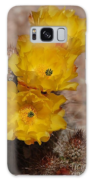 Three Yellow Cactus Flowers Galaxy Case
