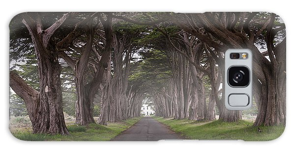 Through The Cypress Galaxy Case