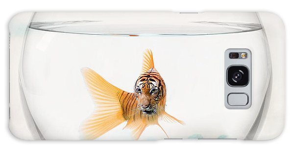 Tiger Fish Galaxy Case