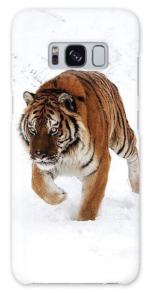 Tiger In Snow Galaxy Case