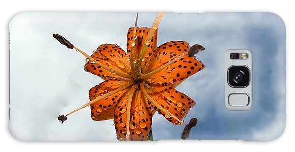 Tiger Lily In A Shower Galaxy Case