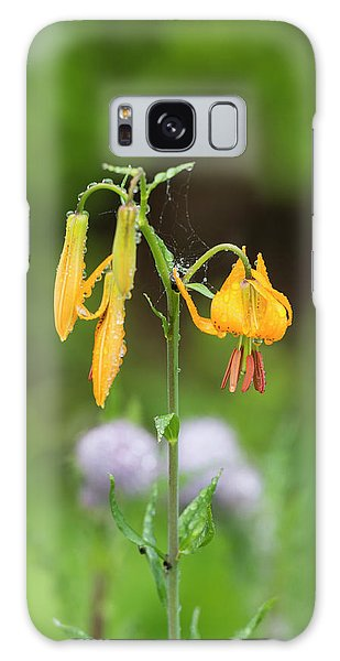 Tiger Lily In Olympic National Park Galaxy Case