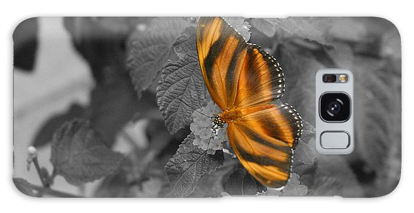 Tiger On The Wing 1 Colorized Galaxy Case