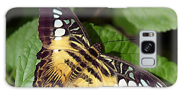 Tiger Print --- Clipper Butterfly Galaxy Case