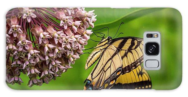 Tiger Swallowtail #210 Galaxy Case