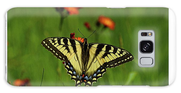 Tiger Swallowtail Butterfly Galaxy Case by Nancy Landry