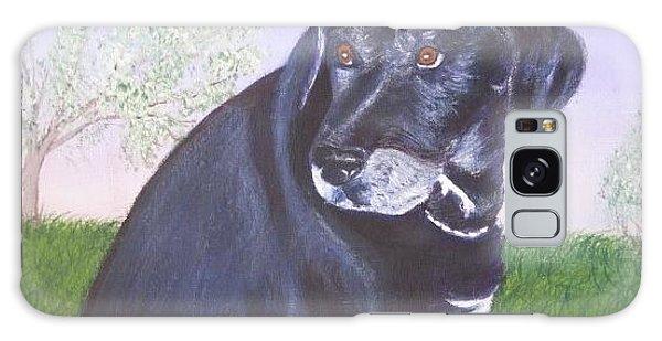 Tiko, Lovable Family Pet. Galaxy Case