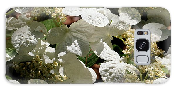 Tiled White Lace Cap Hydrangeas Galaxy Case