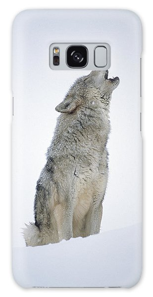 Galaxy Case featuring the photograph Timber Wolf Portrait Howling In Snow by Tim Fitzharris
