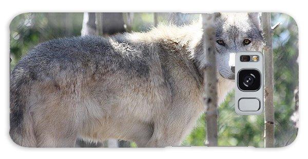 Timber Wolf Galaxy Case