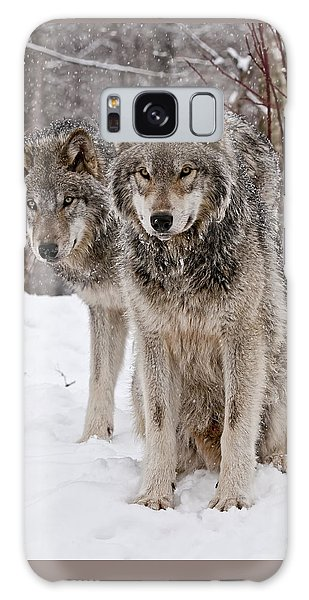 Timber Wolves In Winter Galaxy Case
