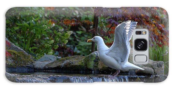 Time For A Bird Bath Galaxy Case by Keith Boone
