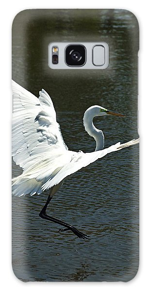 Galaxy Case featuring the photograph Time To Land by Carolyn Marshall