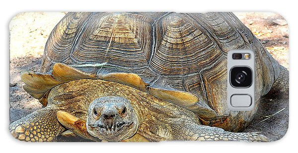 Timothy The Giant Tortoise Galaxy Case