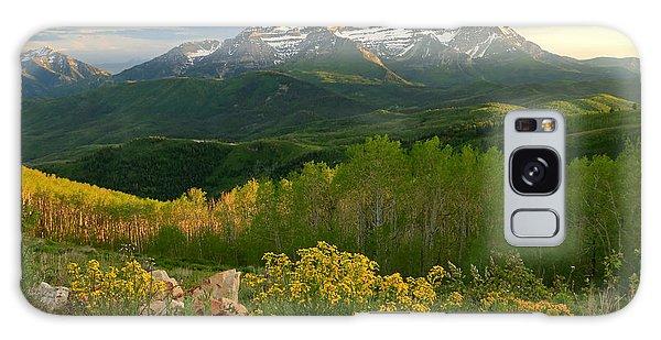Timpanogos From Mill Canyon Peak. Galaxy Case
