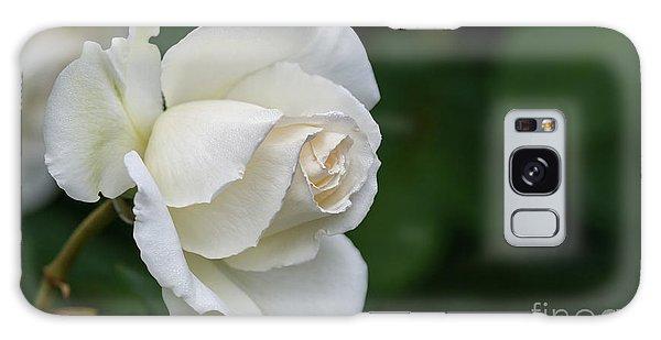 Tineke Rose 2 Galaxy Case