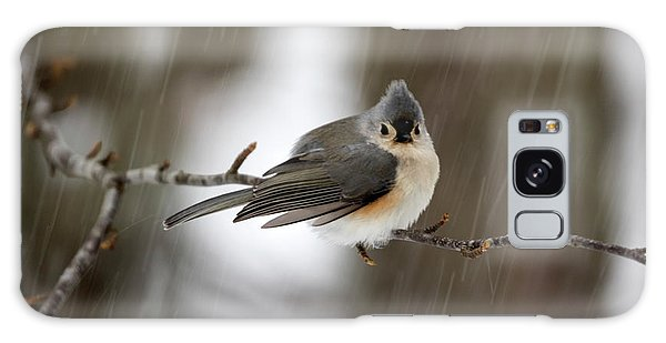 Titmouse During Snow Storm Galaxy Case
