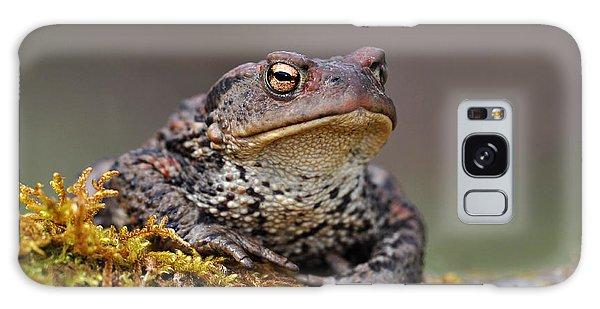 Toad Galaxy Case