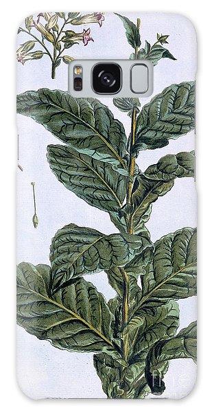 Plants Galaxy Case - Tobacco Plant by Pierre-Joseph Buchoz