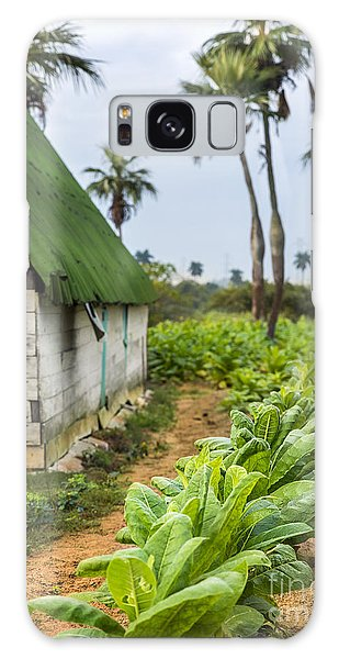 Tobacco Plantation Galaxy Case