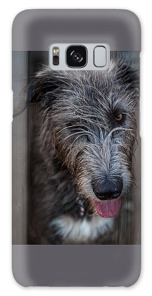 Toby, The Irish Wolfhound Pup Galaxy Case