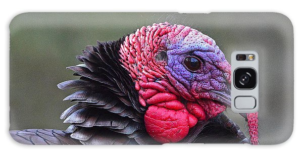 Galaxy Case featuring the photograph Tom Turkey by Ken Stampfer