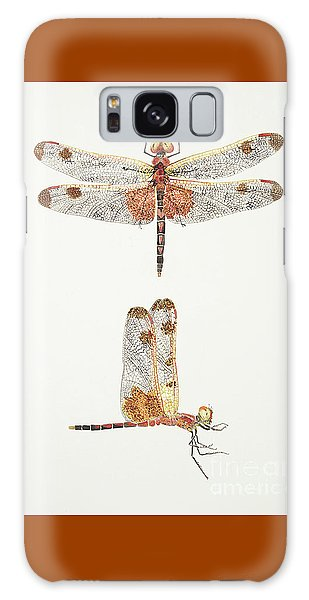 Top And Side Views Of A Male Calico Pennant Dragonfly Galaxy Case
