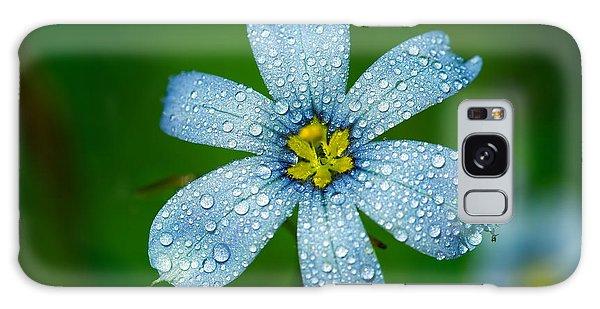 Top View Of A Blue Eyed Grass Flower Galaxy Case