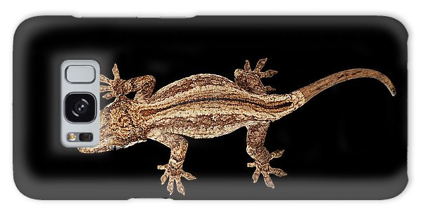Top View Of Gargoyle Gecko, Rhacodactylus Auriculatus Staring Isolated On Black Background. Native T Galaxy Case by Sergey Taran