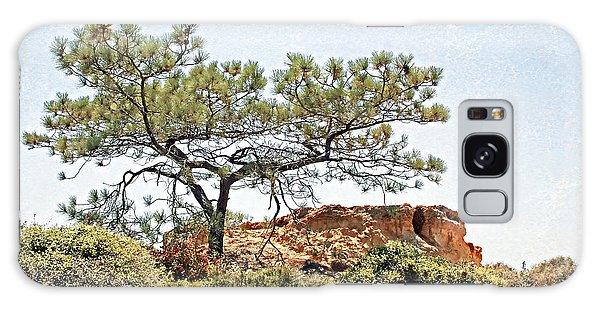 Torrey Pine 1 Galaxy Case