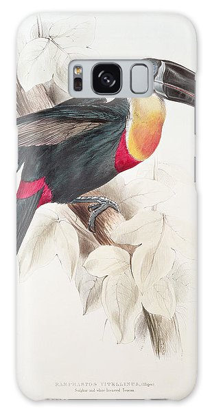 Toucan Galaxy S8 Case - Toucan by Edward Lear