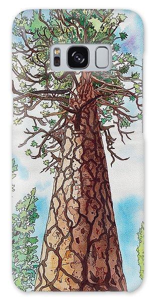 Towering Ponderosa Pine Galaxy Case