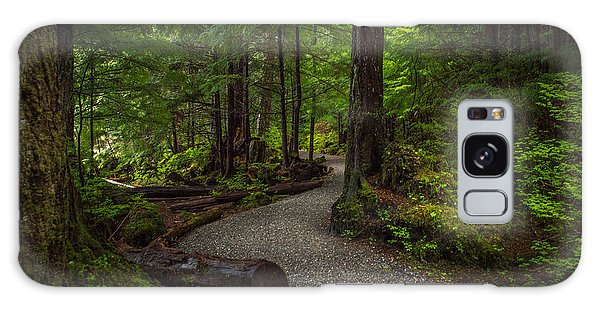 Trail Around Ward Lake Ketchikan Alaska Galaxy Case