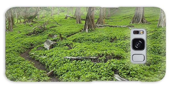 Trail Through Pololu Valley Galaxy Case