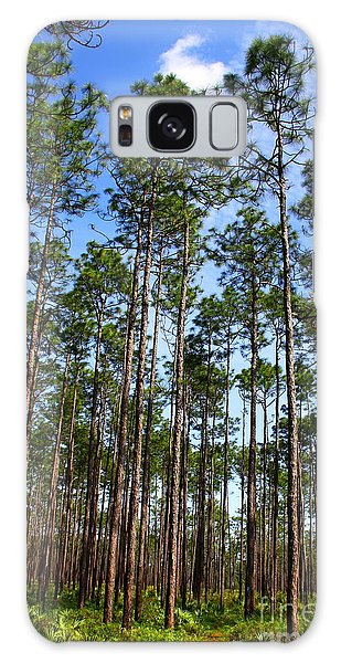 Trail Through The Pine Forest Galaxy Case