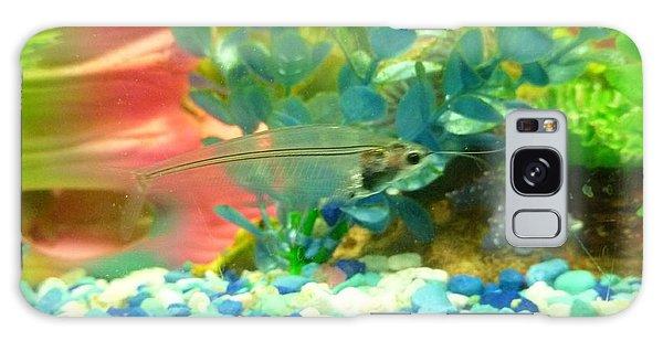 Transparent Catfish Galaxy Case