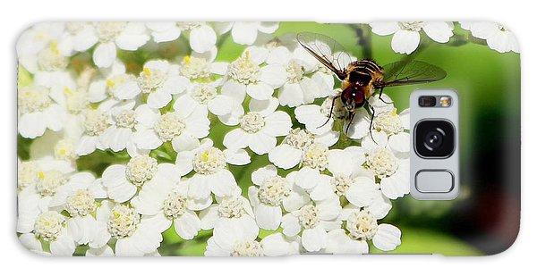 Transverse Flower Fly Galaxy Case