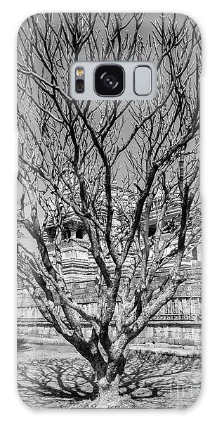 Tree And Temple Galaxy Case