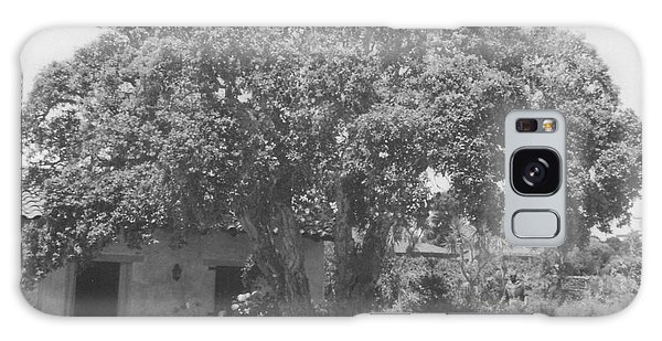 Tree At Carmel Mission Galaxy Case