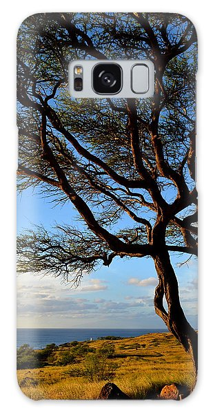 Tree At Lapakahi State Historical Park Galaxy Case