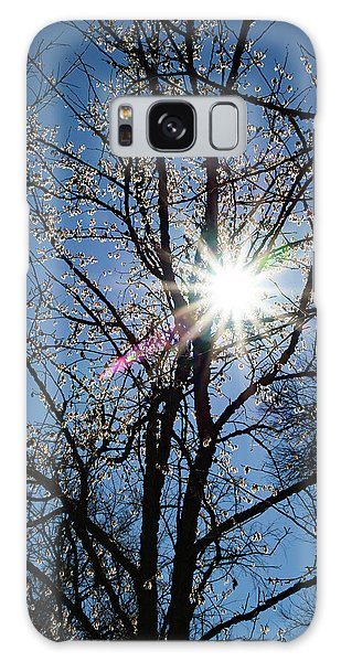 Tree Buds Galaxy Case