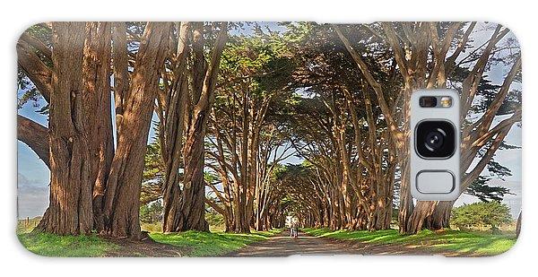 Tree Canopy Galaxy Case