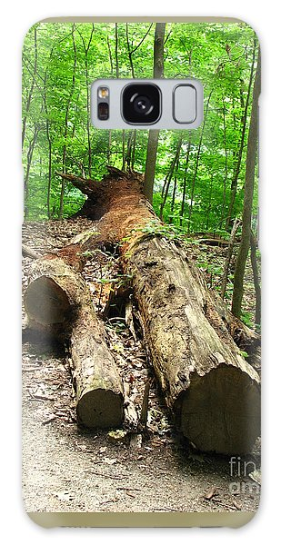 Tree Down Galaxy Case