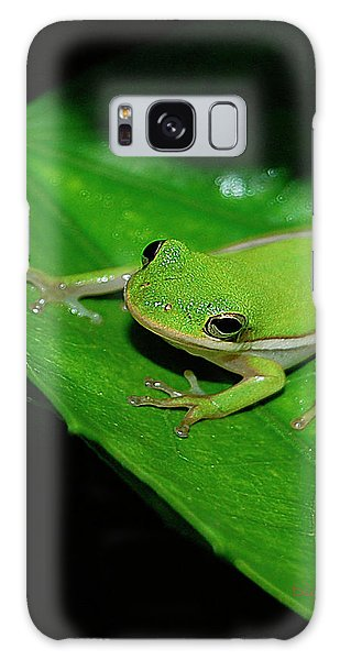 Tree Frog On Hibiscus Leaf Galaxy Case by DigiArt Diaries by Vicky B Fuller
