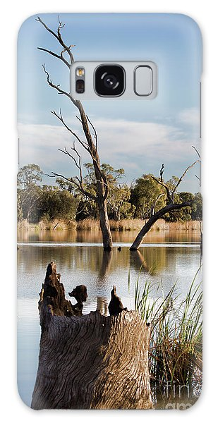 Tree Image Galaxy Case by Douglas Barnard
